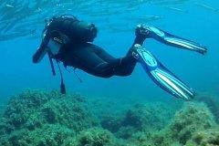 Diving04