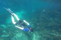 Diving05